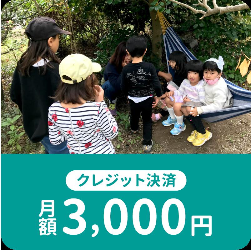 毎月のご寄付3000円
